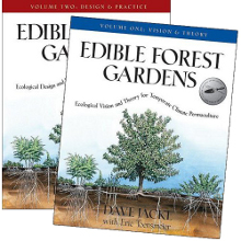 edible forest gardens
