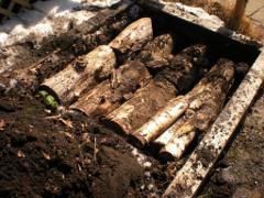 hugelkultur logs