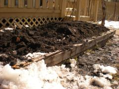 raised bed garden wood border