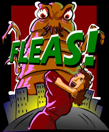 Flea Control1