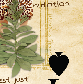 permaculture playing card