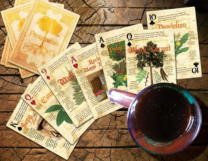 Paul Wheaton's Permaculture Playing Cards