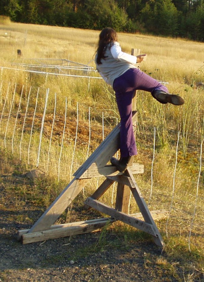 woman climbing over fence with a stile
